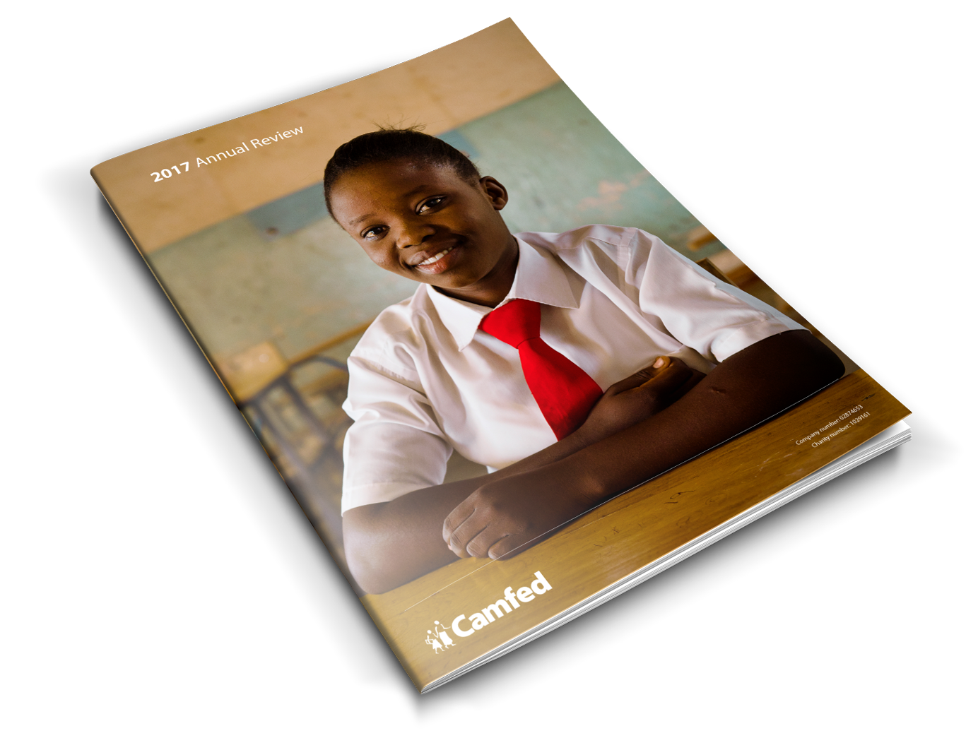 Camfed Annual Review 2017 (international version)