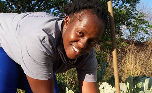News_feature_-_Vivian_Chisenga_CAMA_CT_Agriculture_Guides_ZIM