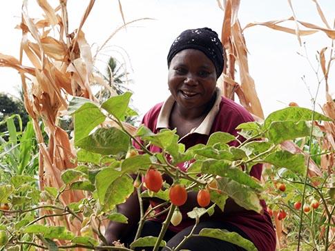CAMFED Association member Mwanaisha on her farm in Tanzania