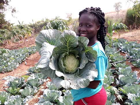 Olivia with her cabbage harvest