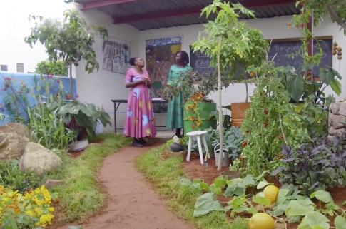 The CAMFED Garden at Chelsea - Highlights Video