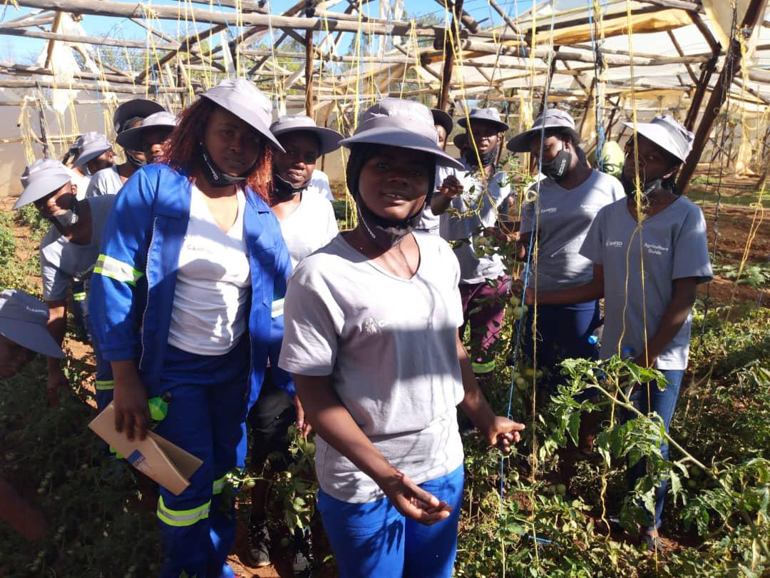 CAMA-Zim-Shurugwi-Agriculture-Guide-Training_Sinikiwe-Makove_WhatsApp Image 2020-10-15 at 14.42.37