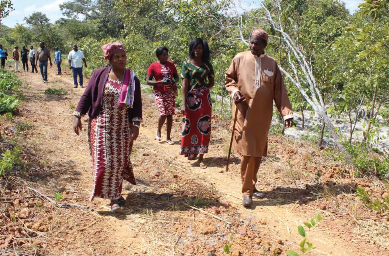 feature-block_chief-nkula-and-dorothy-kasanda-chinsali-farm