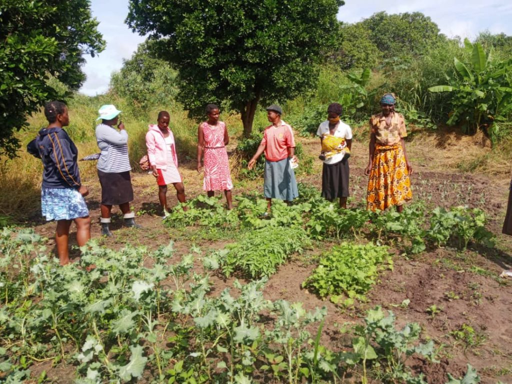 Mothers at the school farm