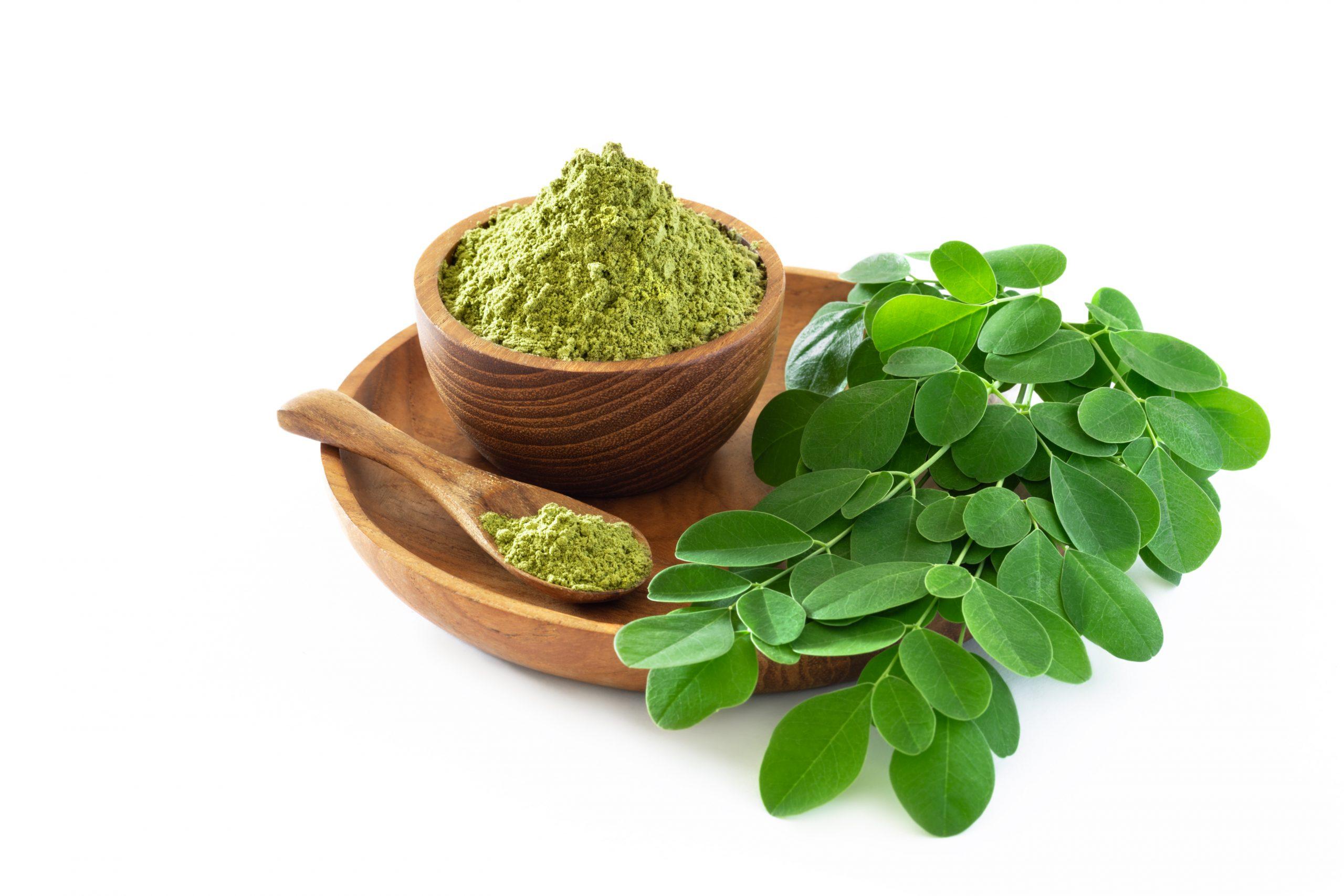 Moringa powder in wooden bowl with original fresh Moringa leaves
